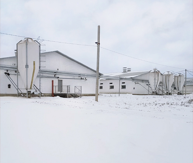 Modern heating of a pig farm