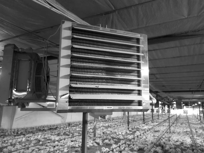 Heating of poultry farms with fan heaters